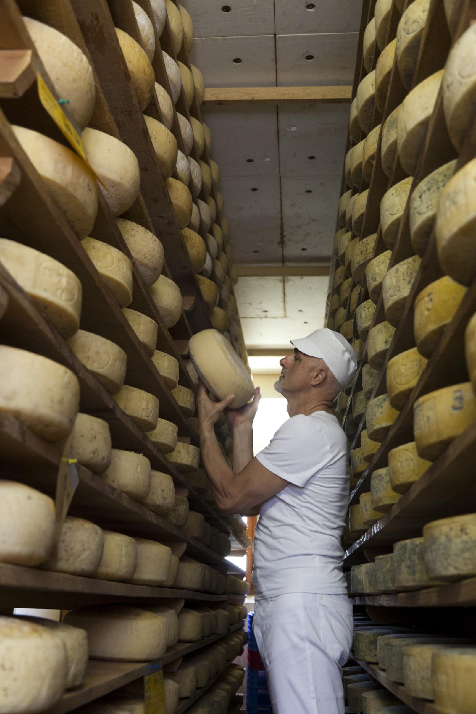 Carlo-Piccoli-nel-locale-stagionatura-formaggi-Latteria-Perenzin
