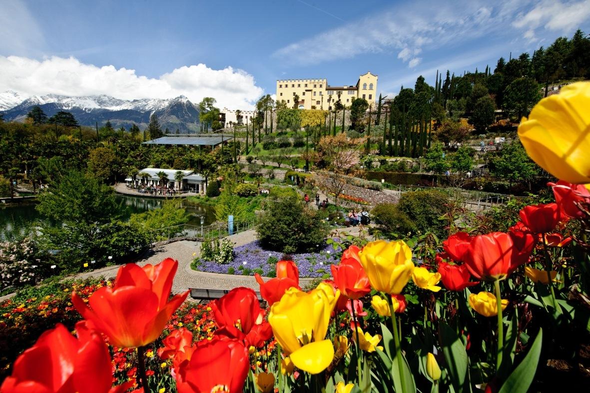 Giardini-di-Castel-Trauttmansdorff-in-primavera