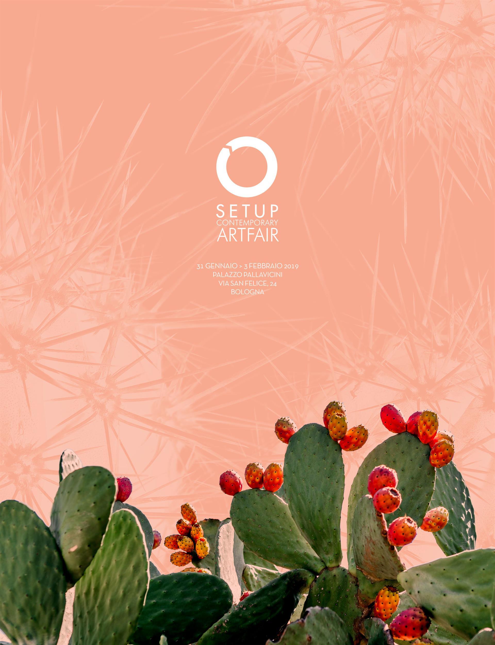 prova-cactus-fiorito-setup-no-punte(0)